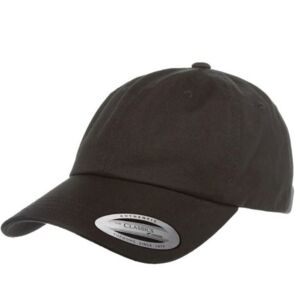 LOW PROFILE COTTON TWILL DAD HAT Thumbnail
